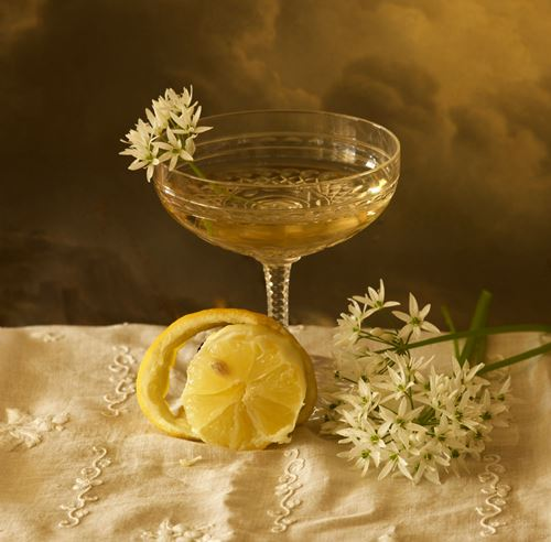 Contemplation Stilllife #5, The Lemon