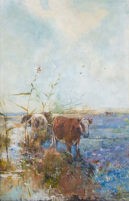 Cows in a dune landscape